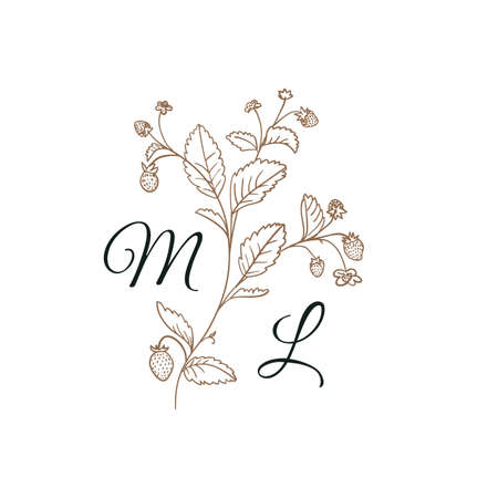 Nature Initials M and L isolated design, uppercase letters with strawberry branch. Vectores