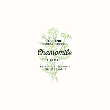 Chamomile symbol natural logo, vector brand identity in line sketch style. Hand drawn nature label. Chamomile medicinal plant with flowers - Logo Template element.