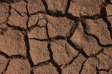 rainless: a shot of dry soil on the ground
