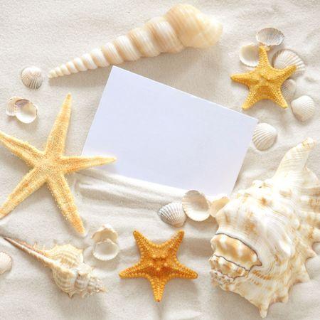 Plaża z partii seashells i rozgwiazdy  Zdjęcie Seryjne