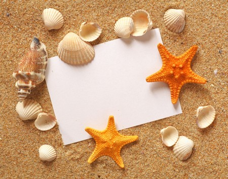 postcard: holiday beach concept with shells, seastars and an blank postcard