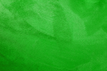 close up of a green coat, fur texture to background Stock Photo - 9041338
