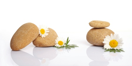 meditation stones: set of flowers on stone on white background Stock Photo