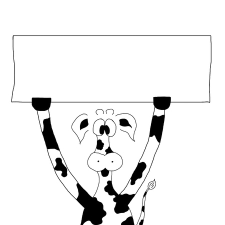 funny back and white cow hold a sign Stock Photo - 11937952