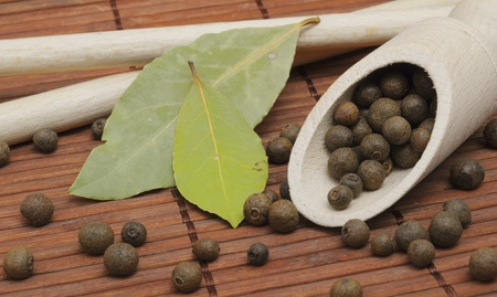 pigment: aromatic spices of pigment and laurel on bamboo background