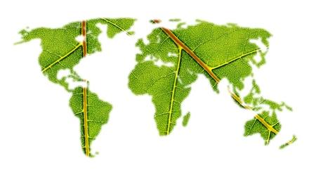 worldmap: world map white leafe texture on white background