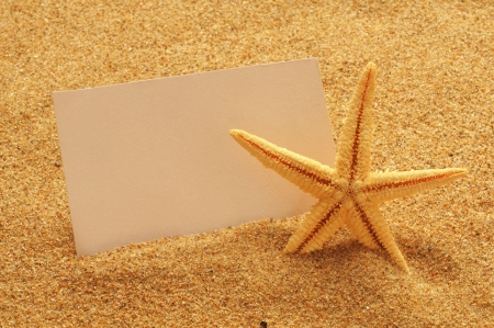 sand writing: holiday beach concept with shells, seastars and an blank postcard