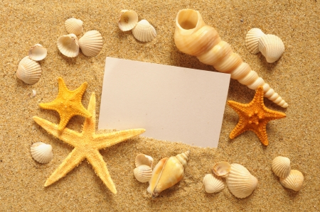 holiday beach concept with shells, seastars and an blank postcard Stock Photo - 16332747