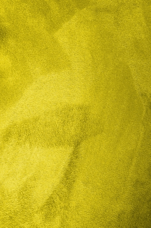 close up of a yellow