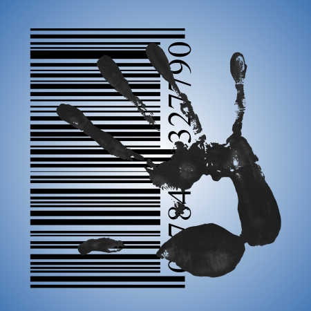 fingermark: identification concept, a black handprint with barcode