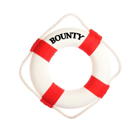 bounty: Life buoy with the word bounty on it Stock Photo