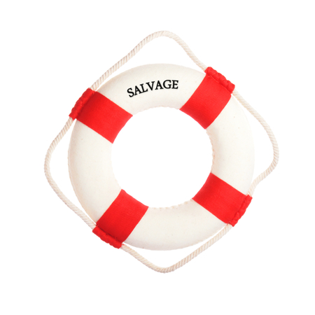 subsidy: Life buoy with the word salvage on it