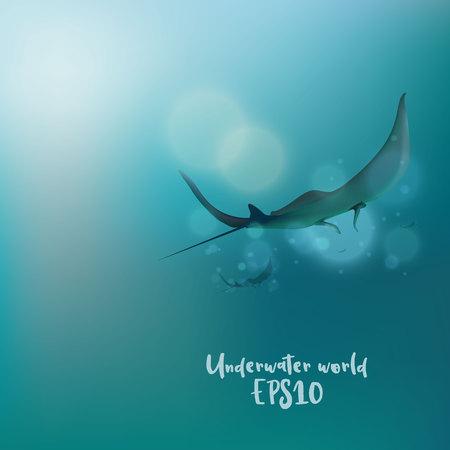 The stingrays under water. Illustration