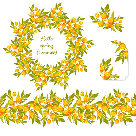 Round frame with pretty leaves and berries of sea-buckthorn. Festive floral circle and seamless border for your season design. Vector Illustration. A set of beautiful wreath with berries and branches
