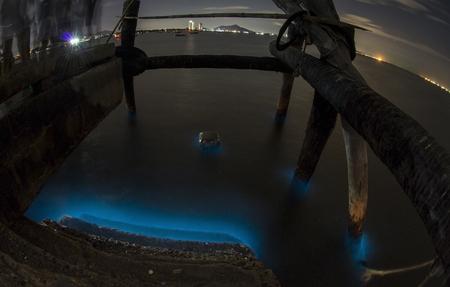 plankton: luminiscencia bio. La iluminaci�n de plancton en Chon Buri, Tailandia Foto de archivo
