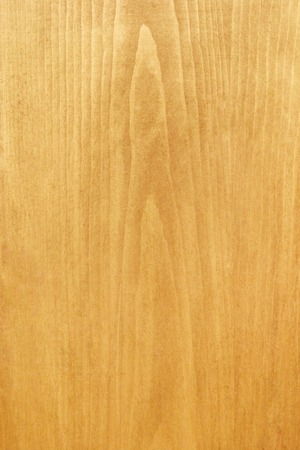 Close-up of a piece of pine wood Stock Photo - 1666825