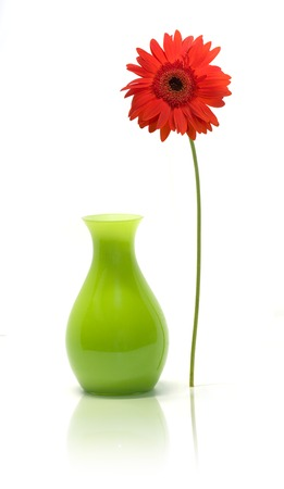 Still-life of a daisy standing outside of its vase