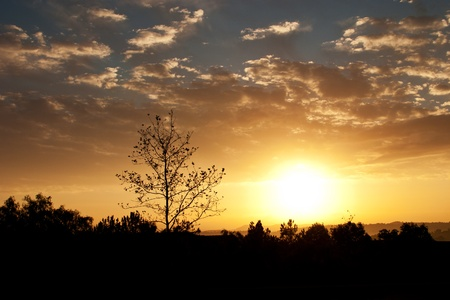 Dramatic sunset with cloudy skies showing bright orange and blue colors with foreground silhouetted Stock Photo