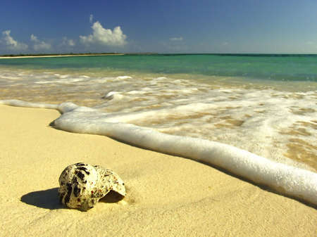 cozumel: Idyllic virgin sand beach on Caribbean Sea, Mexico, Cozumel