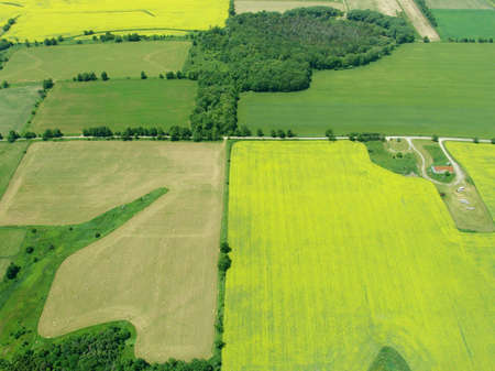 cultivated land: Typical aerial view of green fields and farms, Ontario, Canada Stock Photo