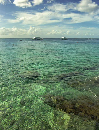 Caribbean Seascape with transparent water and coral reef