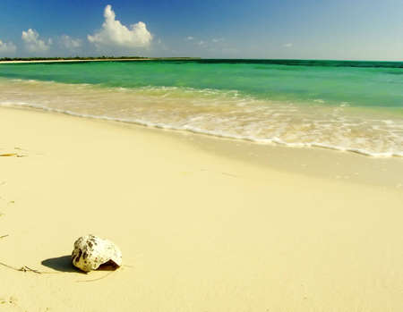 Idyllic virgin sand beach on Caribbean Sea, Mexico, Cozumel