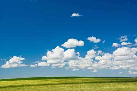 Summer Landscape: green field and blue sky with clouds. Standard-Bild