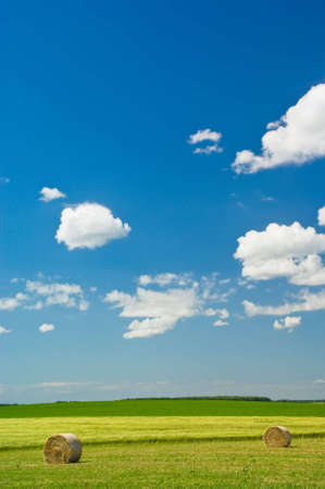 Summer Landscape: green field and blue sky with clouds. Stock Photo