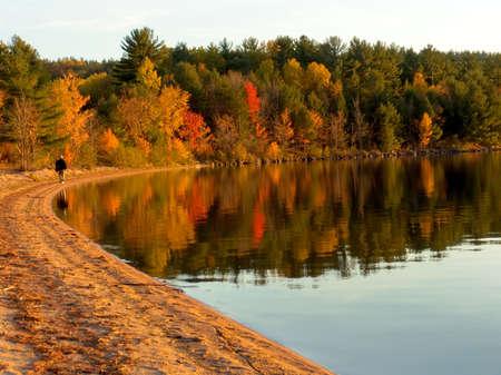 秋の森、湖の上。秋の色の水に反映しています。アルゴンキン州立公園、オンタリオ州、カナダ。10 月