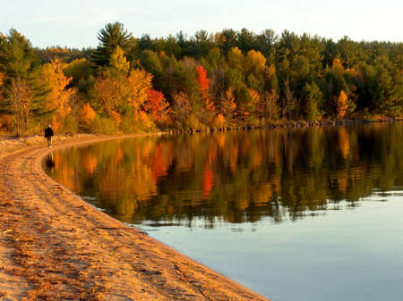 Autumn forest on the lake. Fall colors reflecting on water. Algonquin Provincial Park, Ontario, Canada. October