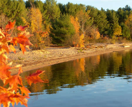 Autumn forest on the lake. Algonquin Provincial Park, Ontario, Canada. October