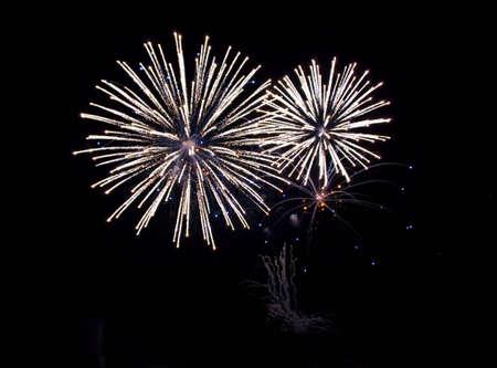 Fireworks Celebration over black night sky background