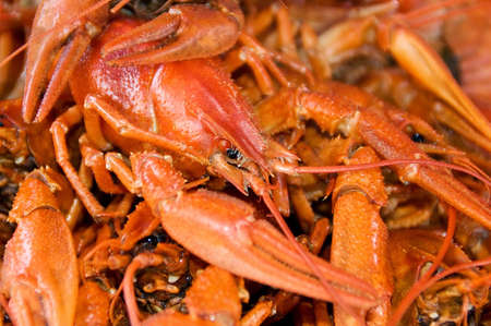 lobster dinner: Cooked Red Crawfish for gourmet lobster dinner. Stock Photo