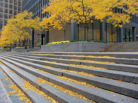 Autumn in city. Financial district. Business Centre of Toronto, Canada