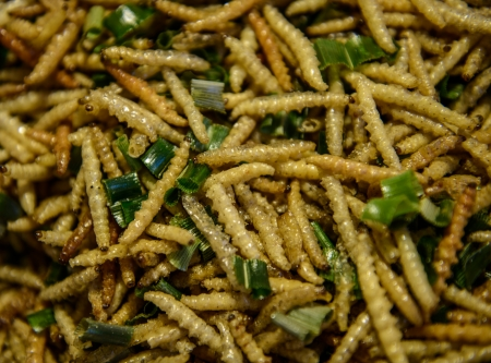 mealworm: Fried worms