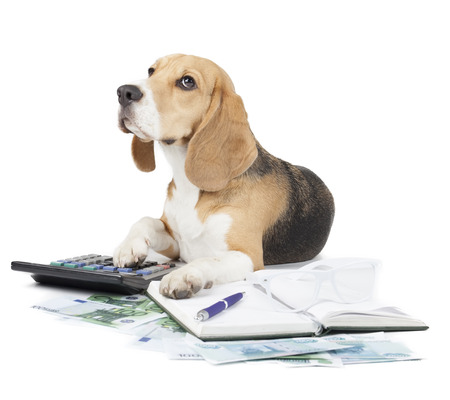 business dog typewriter on a white background
