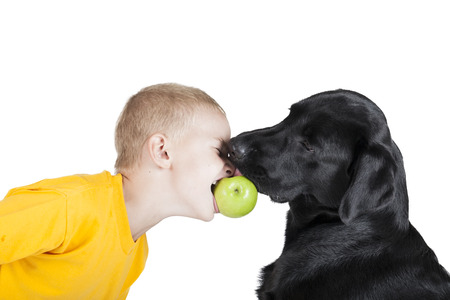 child with a dog bite an apple on a white background in studio photo