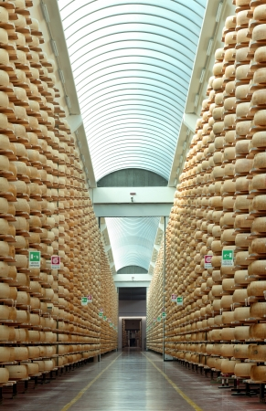 maturing storehouse of Italian typical parmesan cheese Stock Photo
