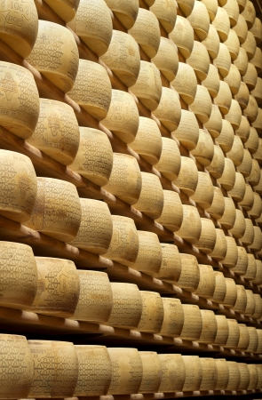 parmesan: pile of typical italian cheese stacked in storehouse