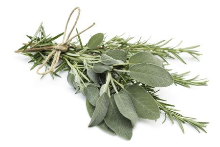 sage: close up of tied twigs of sage and rosemary Stock Photo