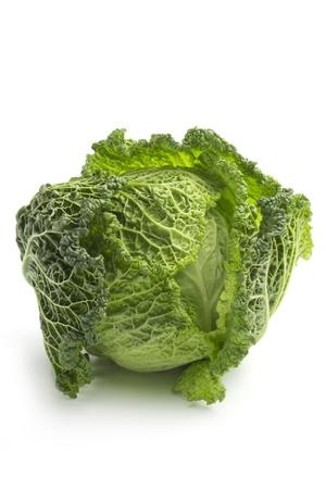 savoy cabbage: close up of savoy cabbage on white background