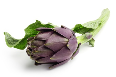 close up of fresh artichoke isolated on white background photo
