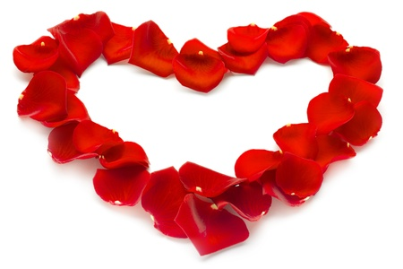 heart of red rose petals on white background photo