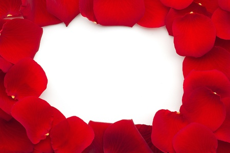 close up of a frame with red rose petals