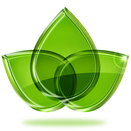 drie groene bladeren geïsoleerd op witte achtergrond