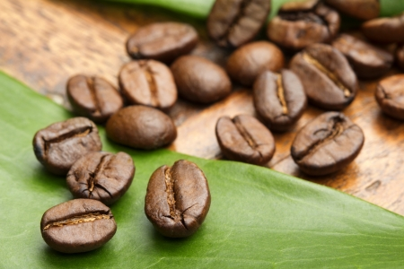close up of coffee beans on a green leaf photo