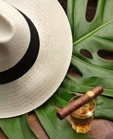 sigaar op een glas rum, panama en groen blad Stockfoto