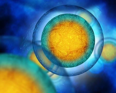 membrana cellulare: cellule uovo che scorre in uno sfondo blu