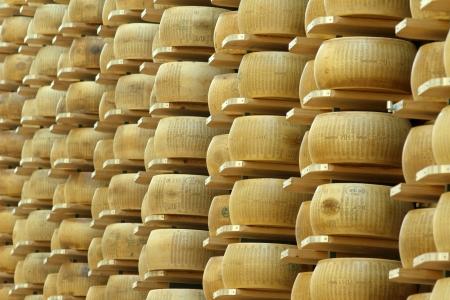 多くの倉庫の棚にパルメザン チーズの車輪