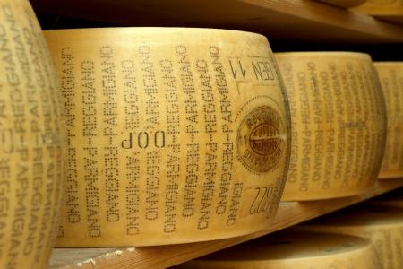 rack wheel: close up of typical italian hard cheese
